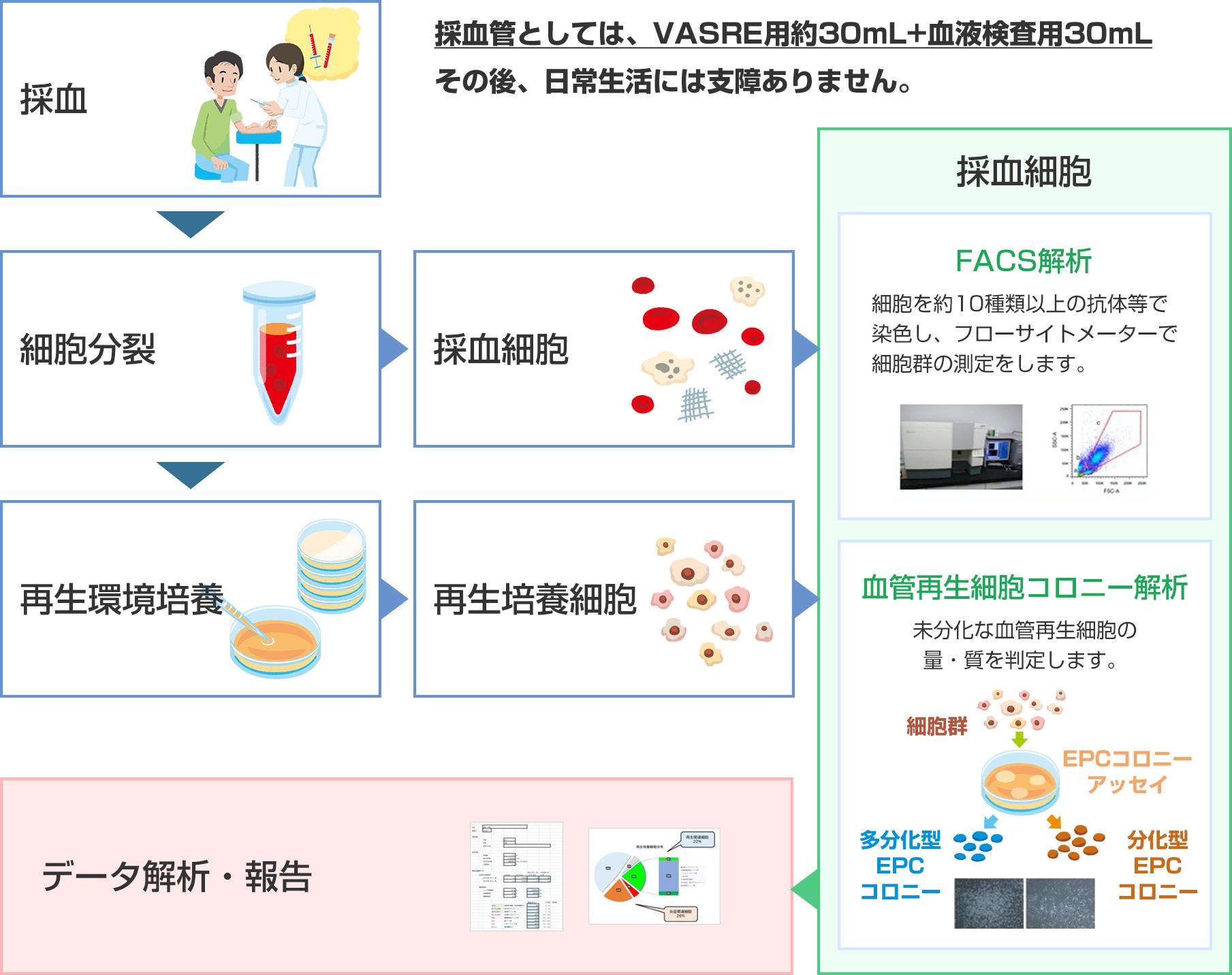 検査方法(採血検査のみ)