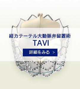経カテーテル大動脈弁留置術 TAVI